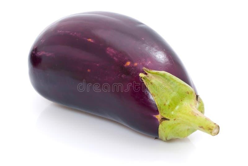Ripe Aubergine. Ripe eggplant aubergine isolated on white background royalty free stock images