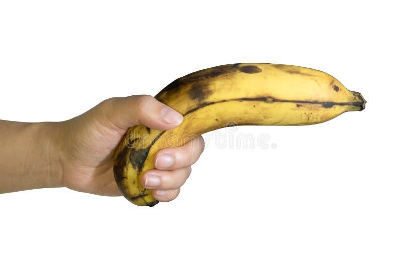 Ripe Banana fruit gun hold in hand stock photography