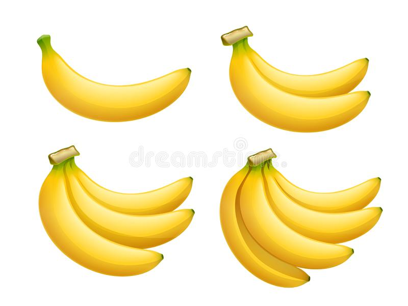 Ripe banana. Set of Tropical fruit. Vector illustration. Ripe banana. Tropical fruit. Natural organic product. Healthy food. Summer meal. Isolated white stock illustration