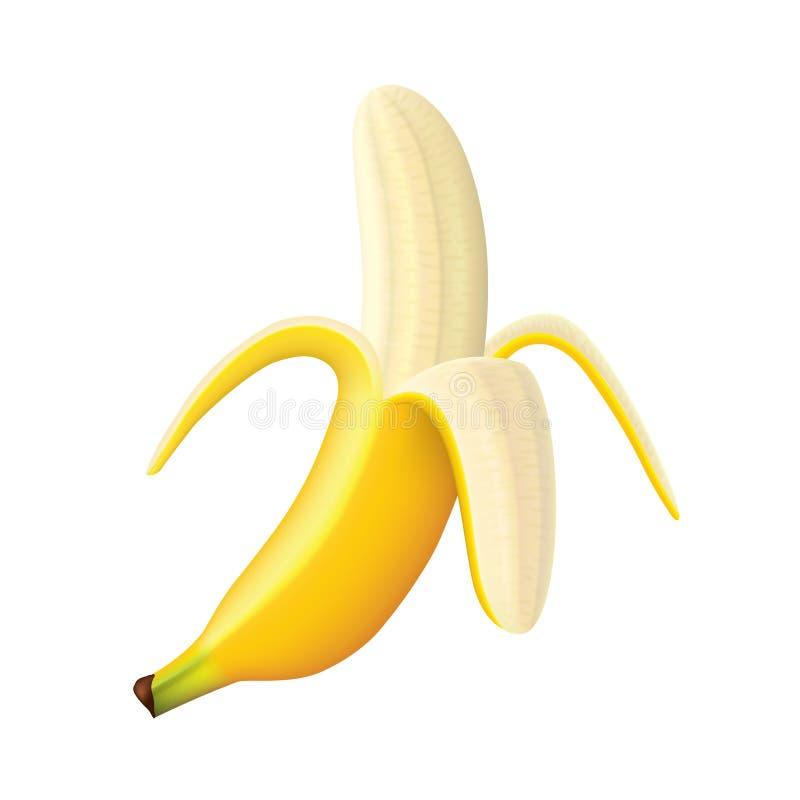 Free Ripe Banana Vector Illustration Royalty Free Stock Images - 40374529