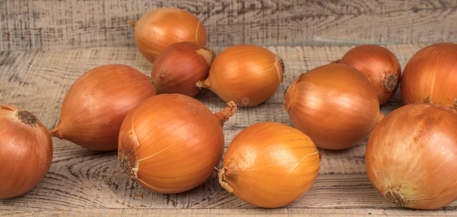 Ripe, beautiful onions on a textured, wooden background. country style. Ripe, beautiful onions on a textured, wooden background stock photo