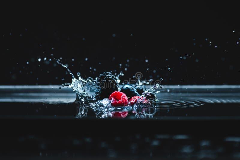 Ripe berries falling in water royalty free stock photos
