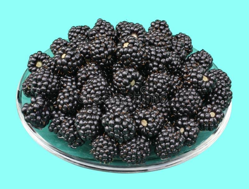 Ripe black berries of sweet garden blackberry lie on a glass pl stock photos