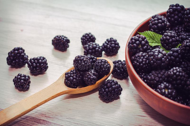 Ripe blackberry in wooden spoons on old wooden background closeup. blackberry crop. Fresh berries, healthy lifestyle. The concept of country life. Ripe royalty free stock image