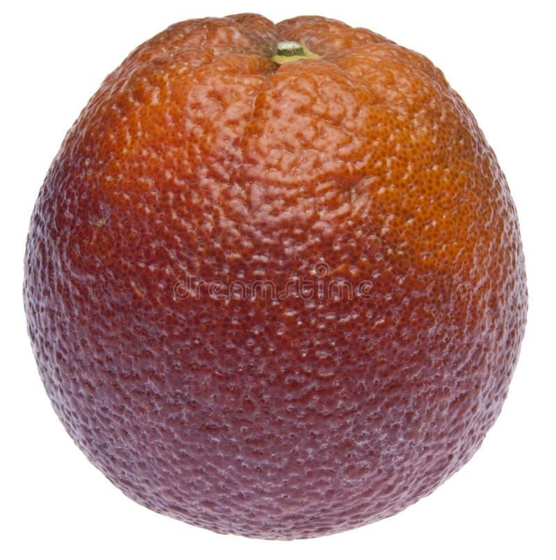 Download Ripe Blood Orange stock photo. Image of organic, snack - 13302724