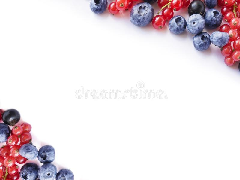 Ripe blueberries and currants on white. Berries at border of image with copy space for text. Red and blue berries. Various fresh s. Ummer berries on white royalty free stock photo