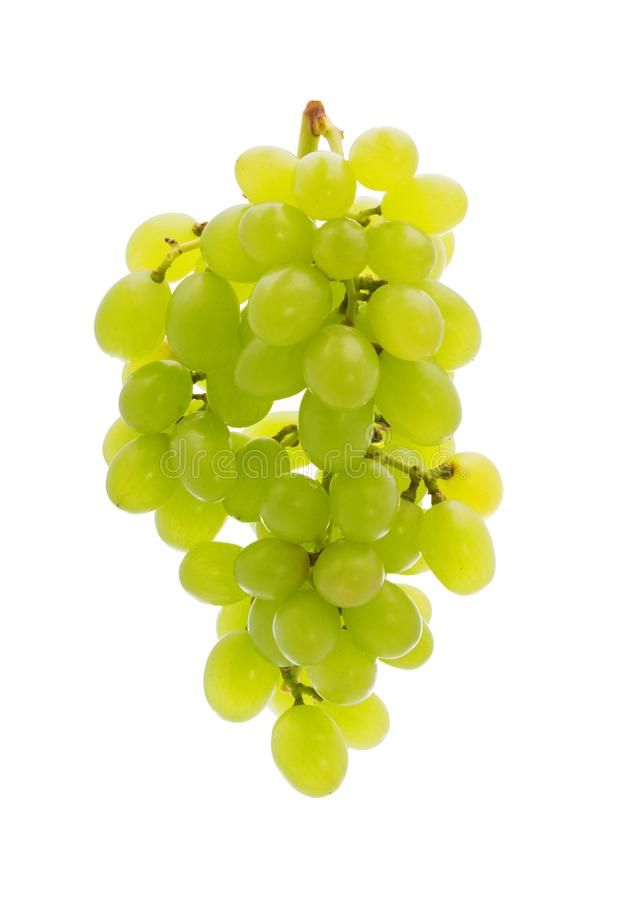 Ripe bunch green grapes isolated on the white background royalty free stock photography