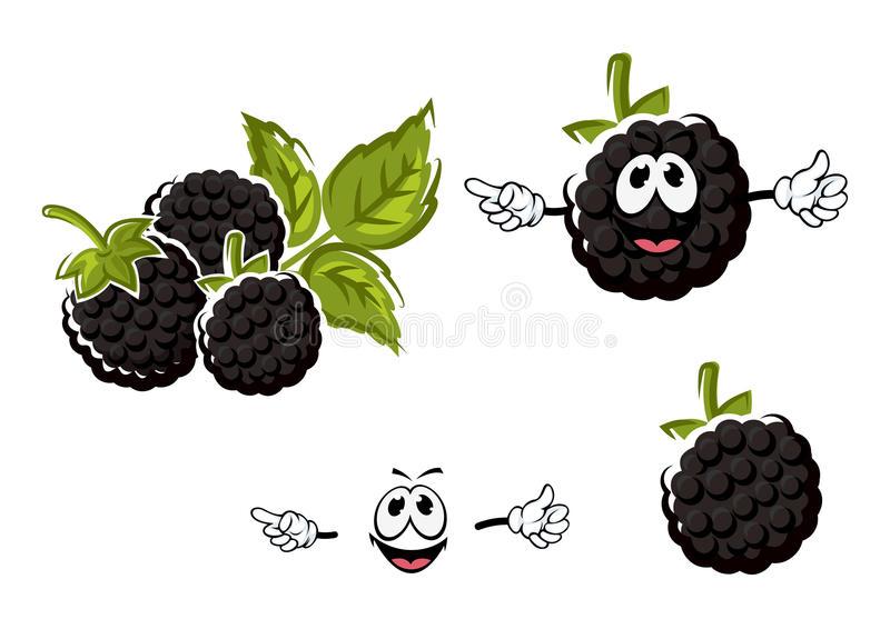 ripe cartoon blackberries fruits characters stock vector