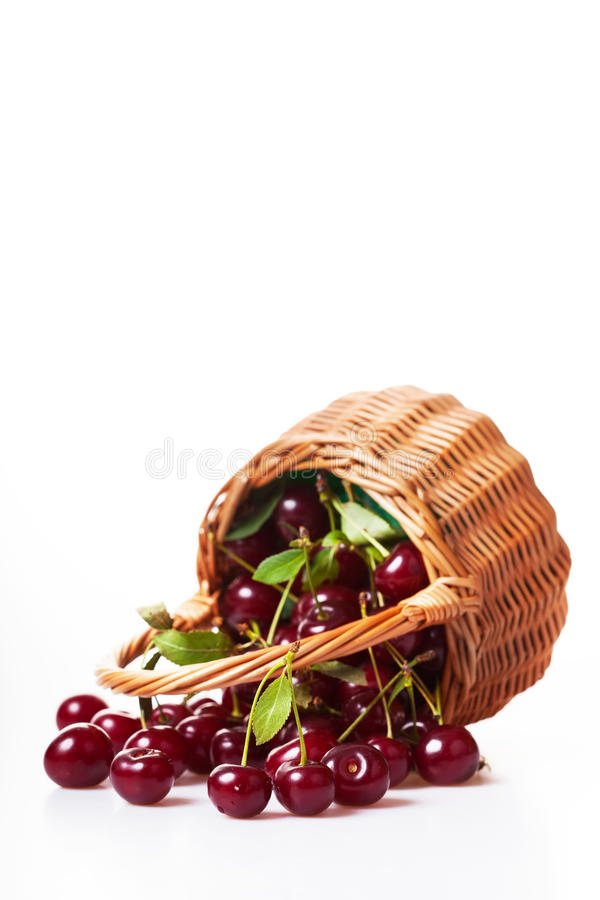 Download Ripe cherries stock photo. Image of delicious, ripe, food - 26168166