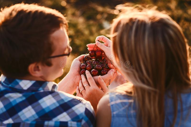 Ripe cherries in the hands of adolescents. Summer royalty free stock photography