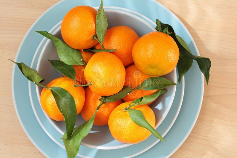 Ripe clementines on the blue, pastel plate. Close up royalty free stock photos
