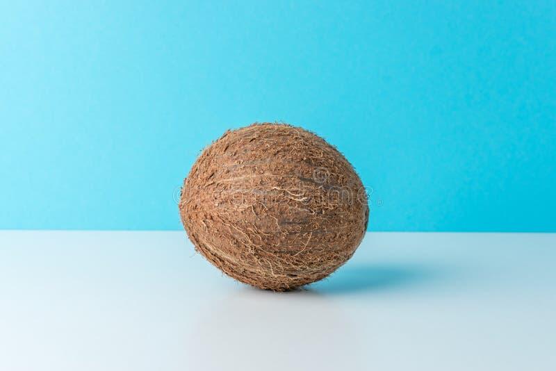 Ripe coconut on blue background. Creative summer minimal concept stock photos