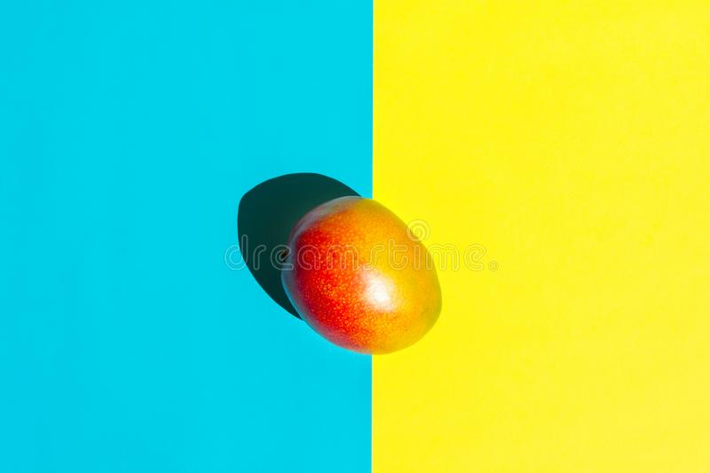 Ripe colorful juicy red mango on duotone yellow blue background. Trendy creative food poster in funky pop art style with shadows. Ripe colorful juicy red mango stock photos