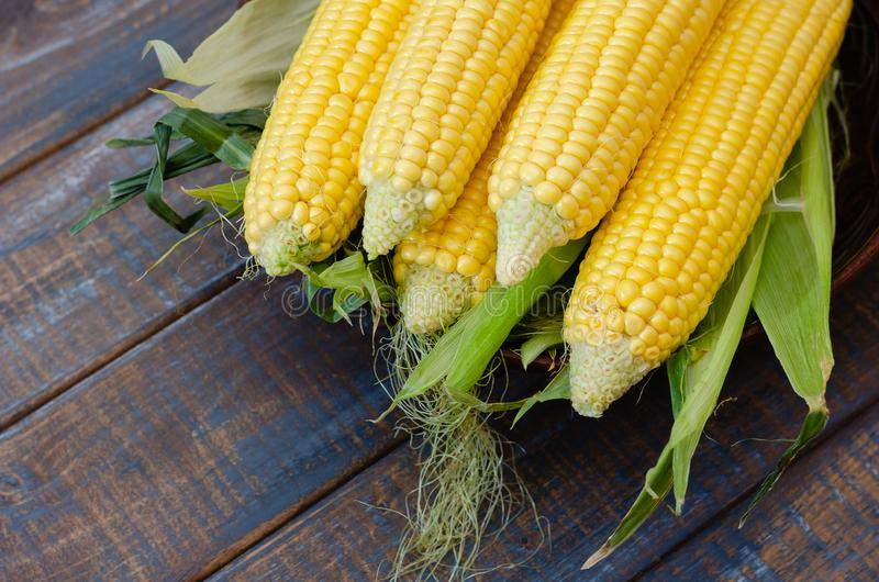 Ripe corn in a clay bowl. stock images