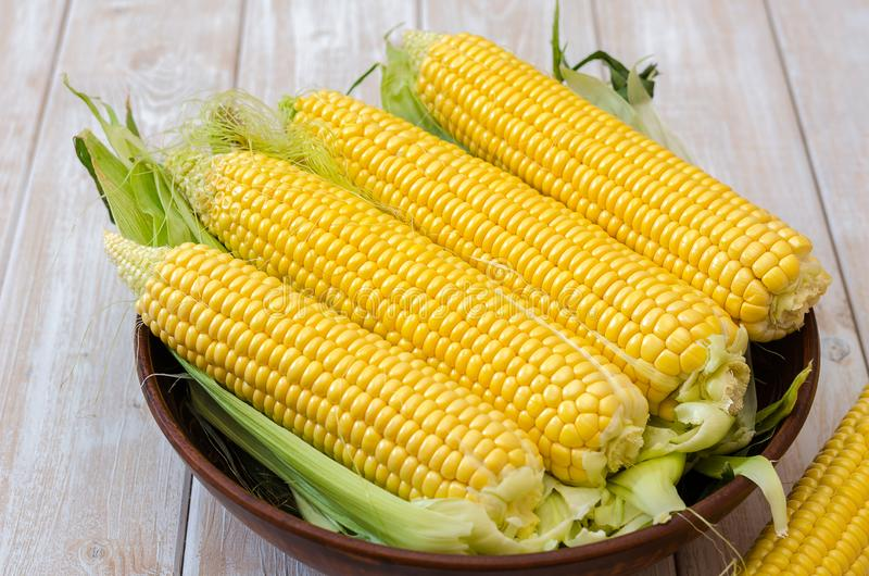 Ripe corn in a clay bowl. stock photography