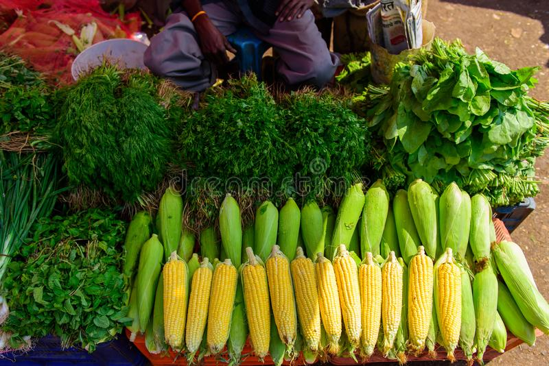 Ripe corn in drops of water and a variety of greens close-up. Local farmer vegetable market in Asia. Counter with corncobs stock images