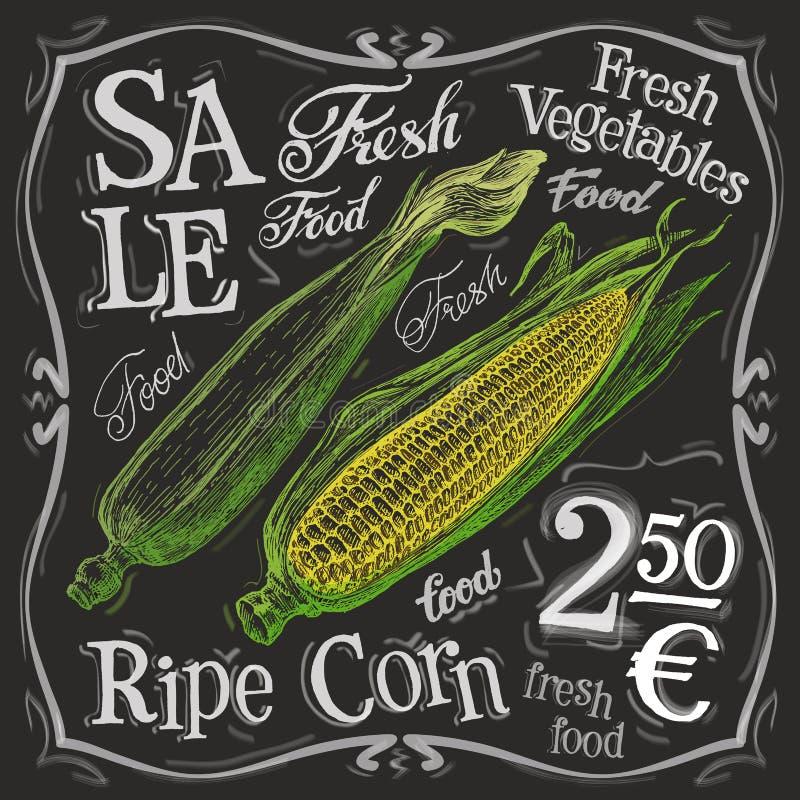 Ripe corn vector logo design template. fresh food vector illustration
