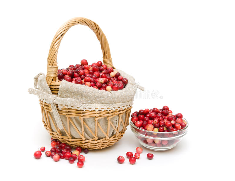 Ripe cranberries on a white background. horizontal phot royalty free stock images