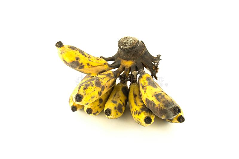 Ripe cultivated banana isolated stock photography