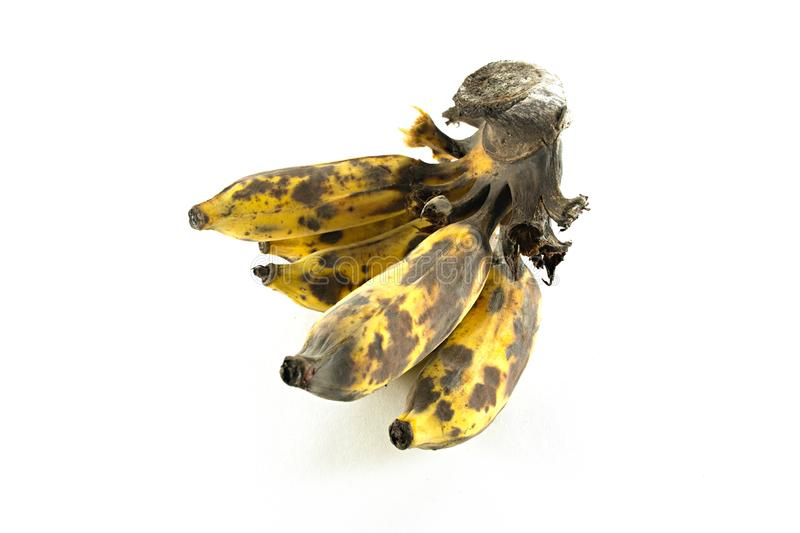Ripe cultivated banana isolated stock image