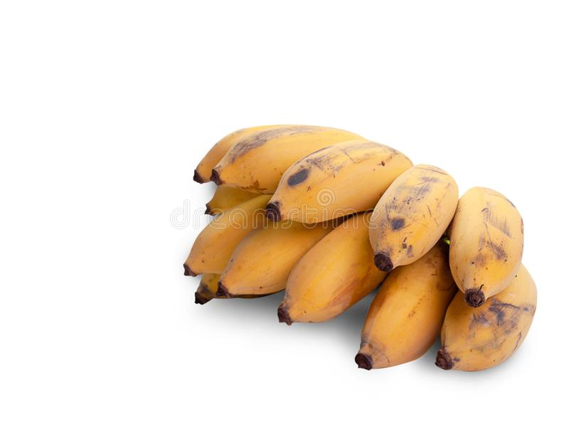 Ripe Cultivated banana. clipping path royalty free stock photos