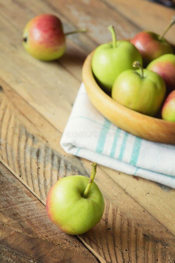 Ripe delicious apples stock image