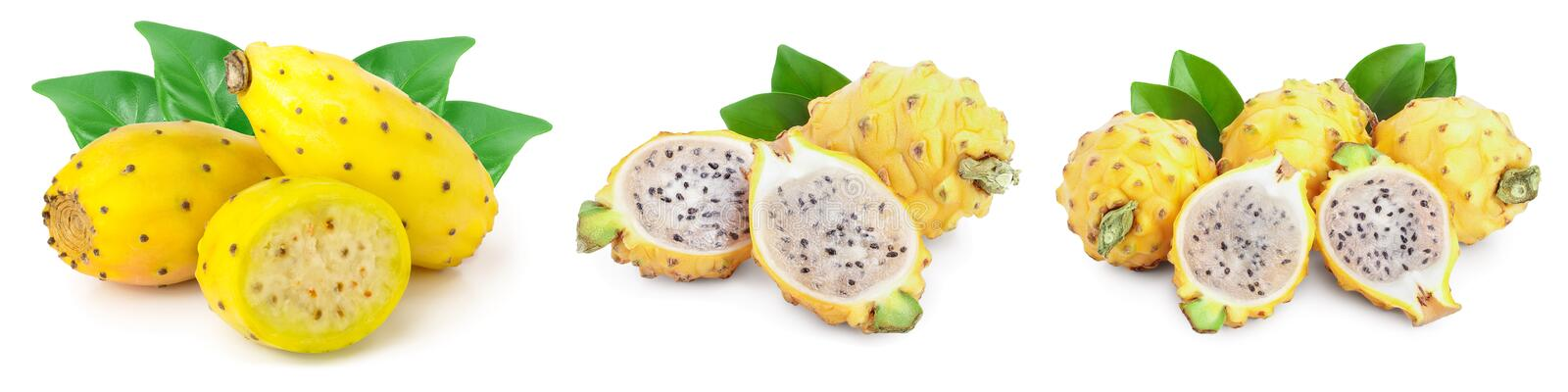 Ripe Dragon fruit, Pitaya or Pitahaya yellow isolated on white background, fruit healthy concept. Set or collection royalty free stock photos