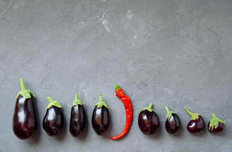 Ripe eggplant and one hot pepper are arranged in a row on a gray background. stock image
