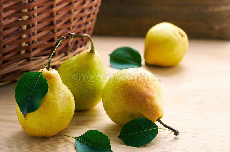 Ripe fresh garden yellow with pink pears laying on wooden table in front of wicker basket. With one pear lost in the corner on wooden background, copy space for royalty free stock images