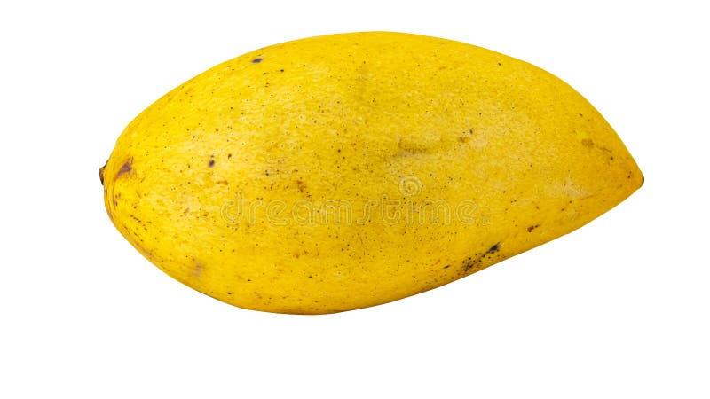 Ripe fresh natural yellow mango fruit macro isolated on white background stock image