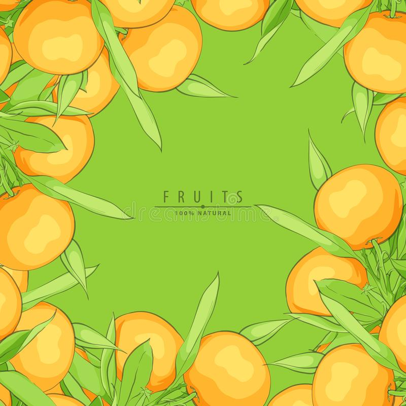 Ripe fresh oranges royalty free illustration