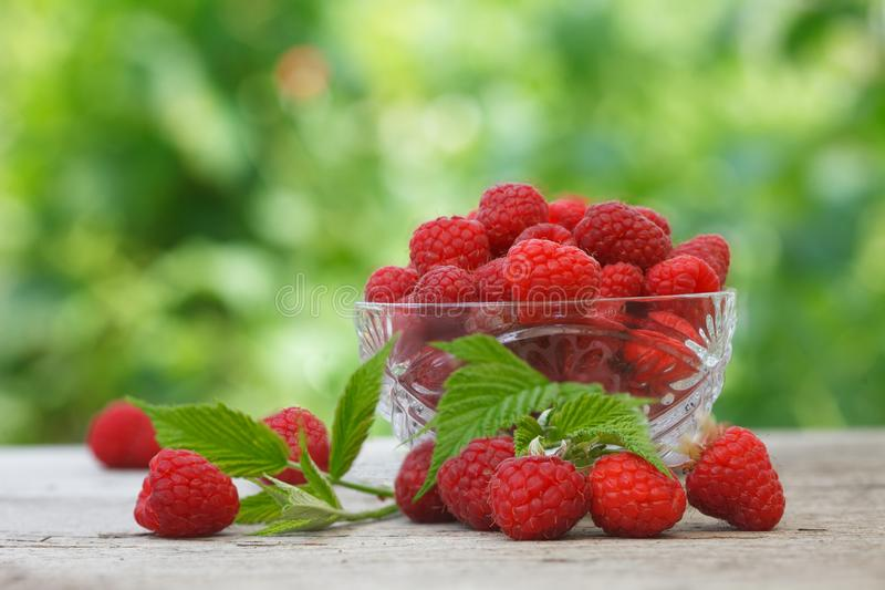 Ripe fresh organic raspberries in crystal glass bowl on wooden table royalty free stock photography
