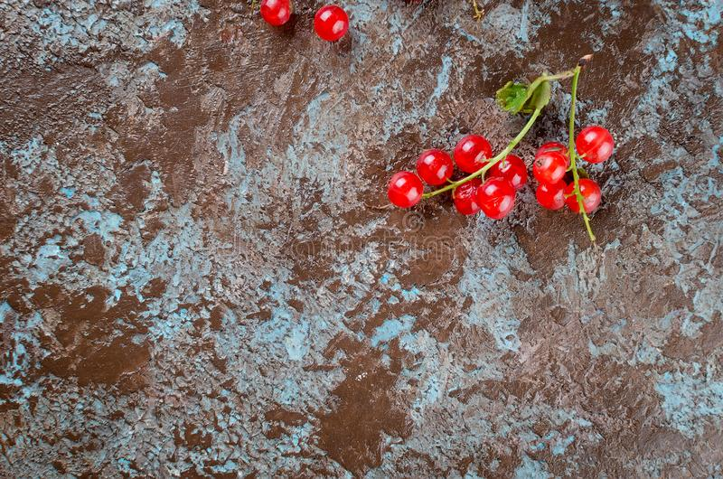 Fresh red currant berries. Ripe fresh red currant berries on dark rustic background top view, copy space royalty free stock image