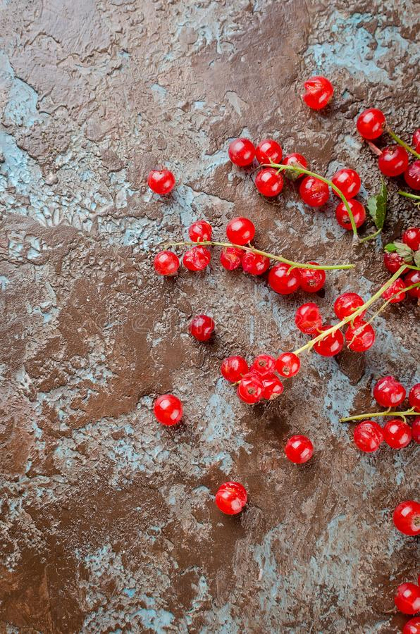 Fresh red currant berries. Ripe fresh red currant berries on dark rustic background top view, copy space stock photography