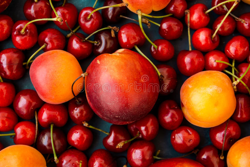Ripe glossy sweet cherries with water drops, nectarines, apricots scattered on dark blue background, seamless pattern royalty free stock photo