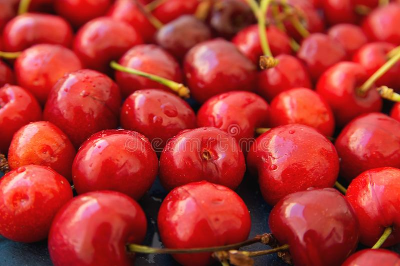 Ripe Glossy Sweet Cherries with Water Drops Scattered on Dark Background. Low Angle Shot Food Pattern stock photo