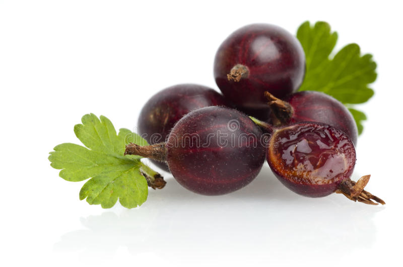 Ripe gooseberry with leaf. On white stock photo
