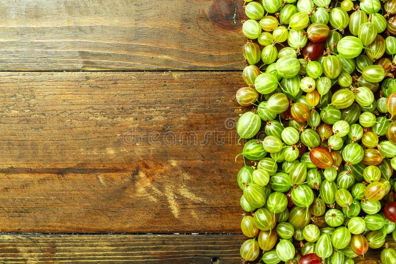 Ripe gooseberry space for text. Gooseberries scattered on a wooden background, top view, space for text royalty free stock image
