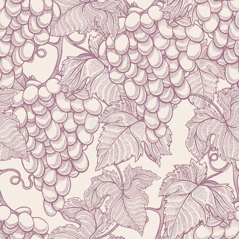 Ripe grapes vector illustration