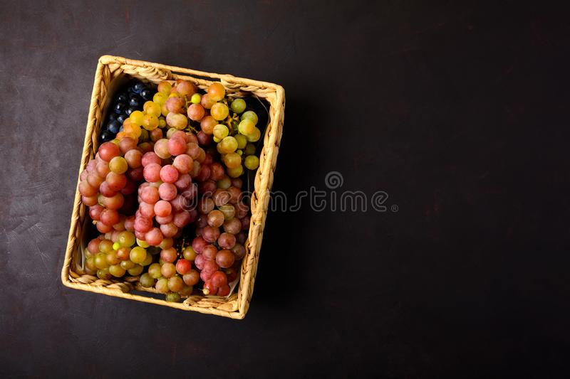 Ripe grapes branches in rustic basket on dark wooden background. Top view. Copy space. Harvesting and healthy eating concept.  stock images