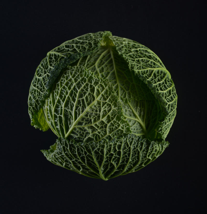 Ripe green savoy cabbage. Ripe green savoy cabbage on a black background stock photography