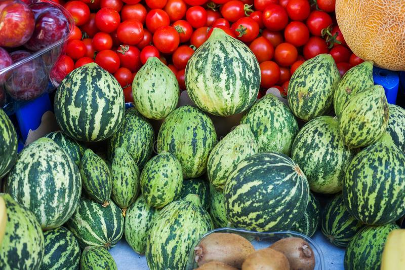 Ripe green small watermelons in the market. Fruits and vegetables on the counter.  stock photography