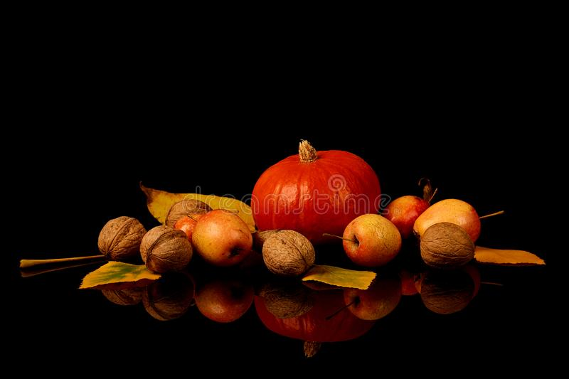 Ripe Hokkaido pumpkin, walnuts and ripe wild apples with yellow autumn leaves isolated on black background stock images