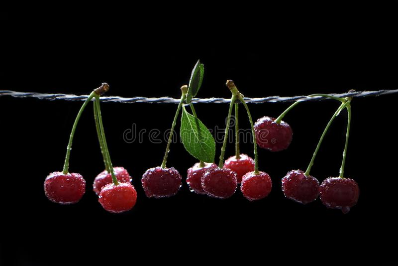 Ripe juicy cherry in the drops on a black background stock images
