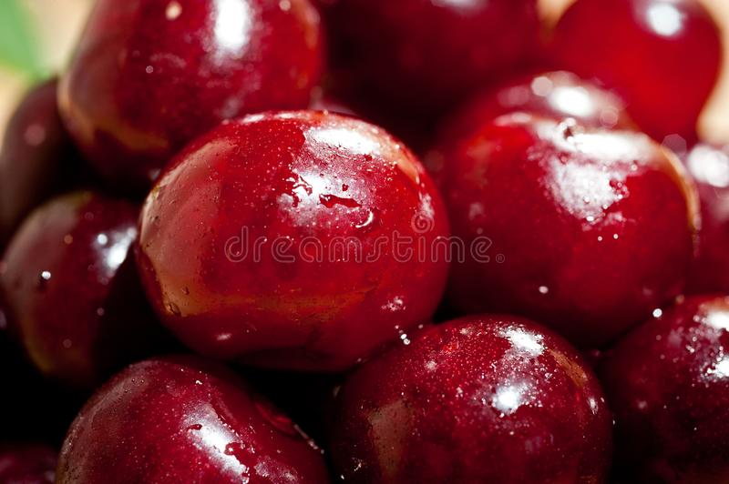 Ripe juicy cherry shot close-up with drops of juice on the surface of berries stock photos