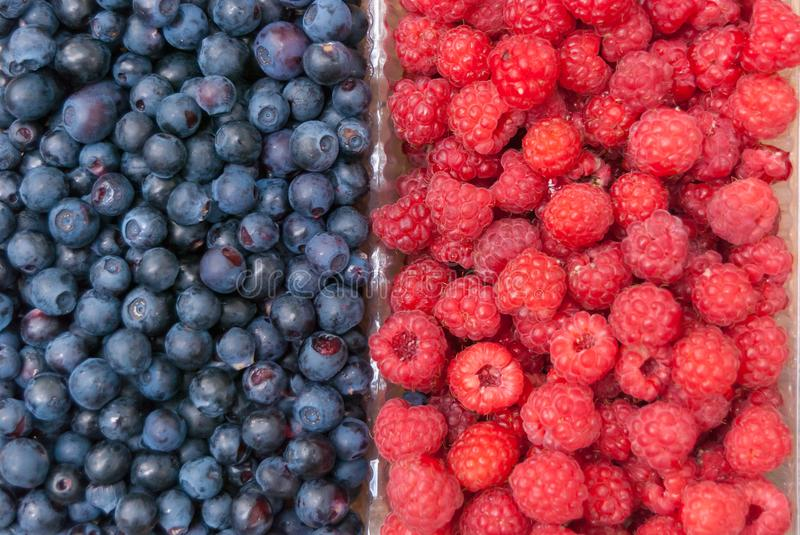 Ripe and juicy fresh berries close-up. Wild blueberries and raspberries in the background. royalty free stock photos