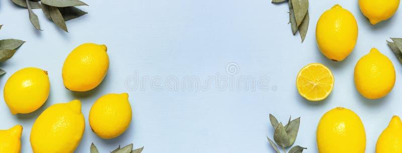 Ripe juicy lemons, eucalyptus twigs on pastel blue background. Lemon fruit, citrus minimal concept, vitamin C. Creative summer. Food minimalistic background stock photo