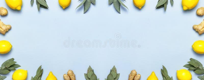 Ripe juicy lemons fresh ginger root eucalyptus twigs on pastel blue background. Lemon fruit citrus minimal concept vitamin C. Creative summer food minimalistic royalty free stock photos