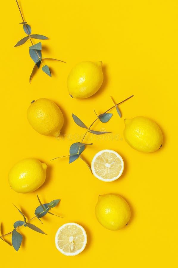 Ripe juicy lemons and green eucalyptus twigs on bright yellow background. Lemon fruit, citrus minimal concept. Creative summer. Food minimalistic background stock images