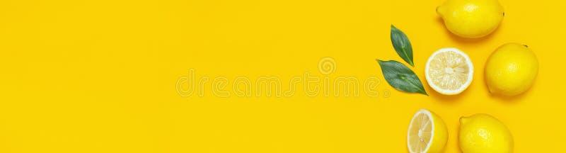 Ripe juicy lemons and green eucalyptus twigs on bright yellow background. Lemon fruit, citrus minimal concept. Creative summer. Food minimalistic background royalty free stock images